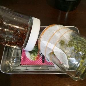 スプラウト 瓶 育て方 ブロッコリースプラウト 栽培 栽培方法 ジャー 私のスプラウト