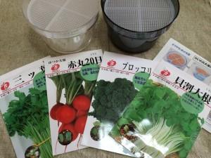 スプラウト 栽培 栽培キット ブロッコリースプラウト 種 容器