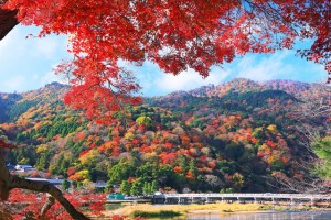 嵐山 京都 紅葉